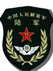 中华-利剑