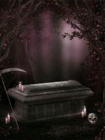 樱花树下的尸骨