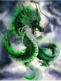 神奇宝贝之龙神传说