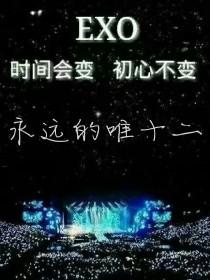 EXO:永远的唯十二