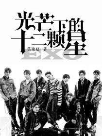 EXO:光芒下的十二顆星