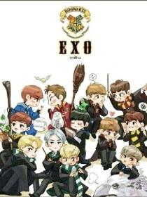 EXO之我真的很喜欢你