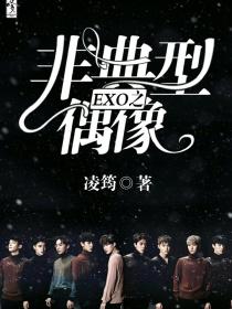EXO之非典型偶像