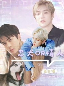 EXO:忠犬or情人