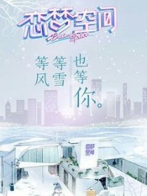 王炸农:恋梦空间