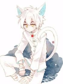京剧猫之白糖的谜之身世、彼岸妹妹