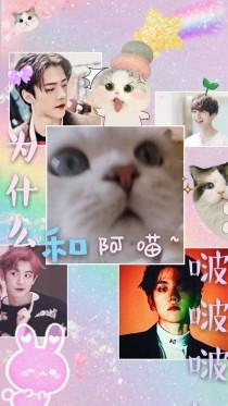 EXO:为什么和阿喵啵啵啵?!