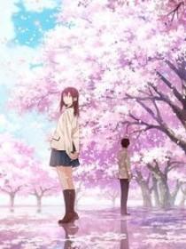 先祭:樱花树的代礼……