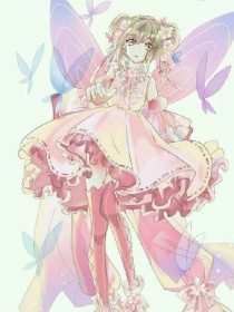 小花仙穿越叶罗丽精灵