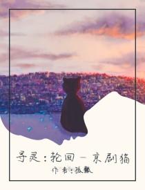寻灵:轮回——京剧猫