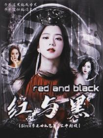 BTS:红与黑