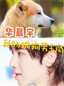 华晨宇:我的狗狗男主角