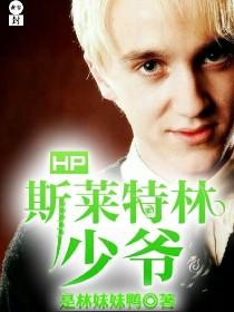 HP斯莱特林少爷
