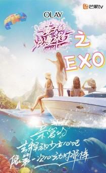 EXO:妻子的浪漫旅行