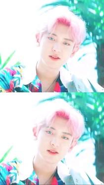 EXO—女尊:那个女人你别走