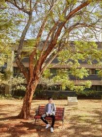 王俊凯:小哑巴的树先生