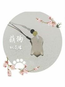 萌狗桃花缘