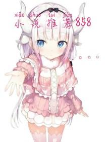 小说推荐858