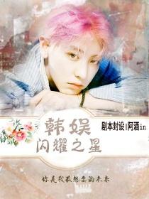 韩娱:闪耀之星