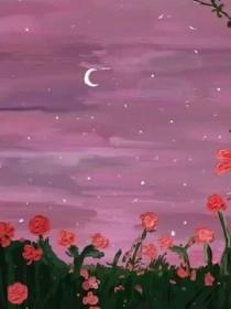 满天挽星月