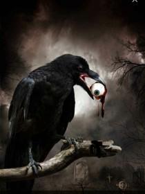 黑夜降临,鬼魂来了!