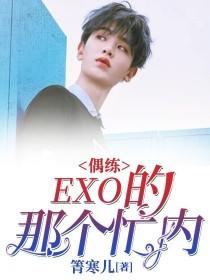 偶練:EXO的那個忙內