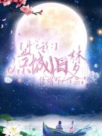 斗龍戰:涼城舊夢
