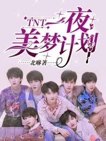 TNT:一夜美梦计划