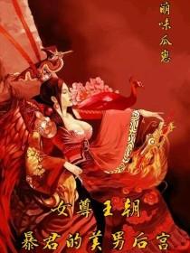 女尊王朝:暴君的美男后宫