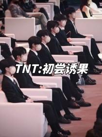 TNT:初尝诱果