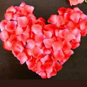 王源摆了n个爱心,玫瑰花瓣飘着,像玫瑰花瓣雨!