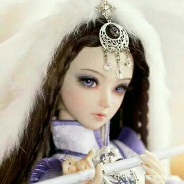 东方神娃之凤凰公主_人物介绍-叶罗丽精灵梦之月神之力-话本小说网